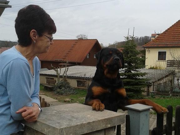 Rocky aus Bad Berka